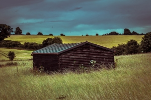 Shed in Field in Hertfordshire, England